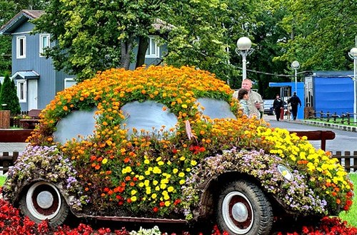 floral vehicle on Terraced house backyard in USA 2020